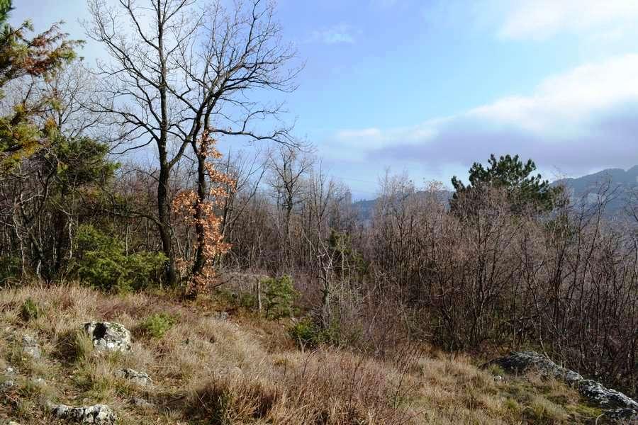 Продажа земельного участка в Ялте 11 соток 4