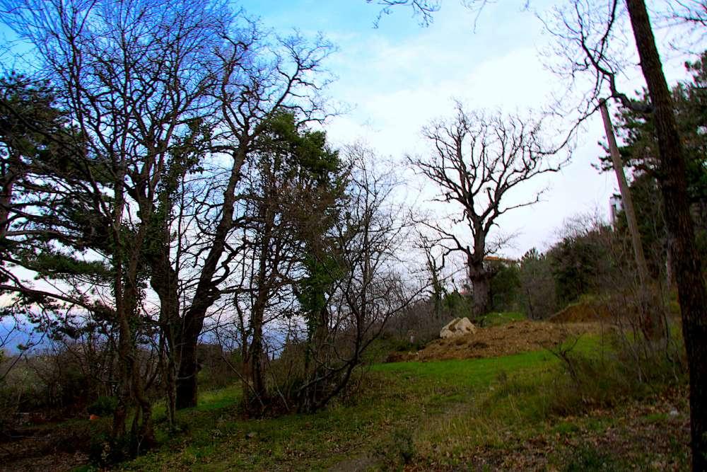 Земельный участок в Мисхоре около Воронцовского парка 1