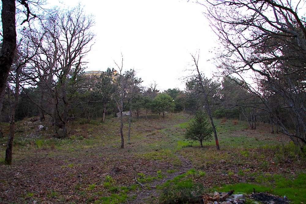 Земельный участок в Мисхоре около Воронцовского парка 5