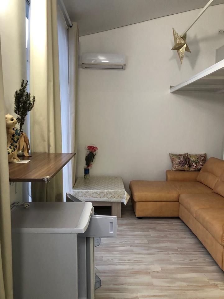 Двухуровневая квартира- студия с ремонтом 13