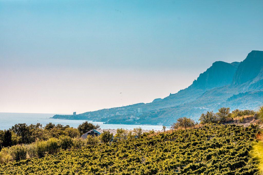 Вилла 11.4 в ЖК Yalta Park Hills 6