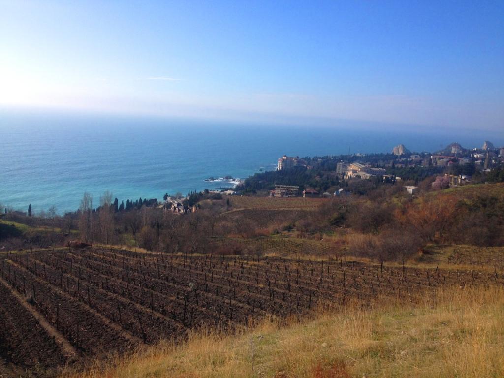 Участок 6 соток пгт.Симеиз с панорамным видом на море. 6