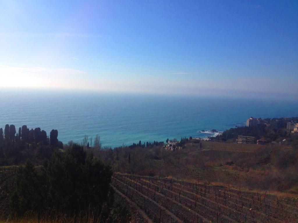 Участок 6 соток пгт.Симеиз с панорамным видом на море. 9