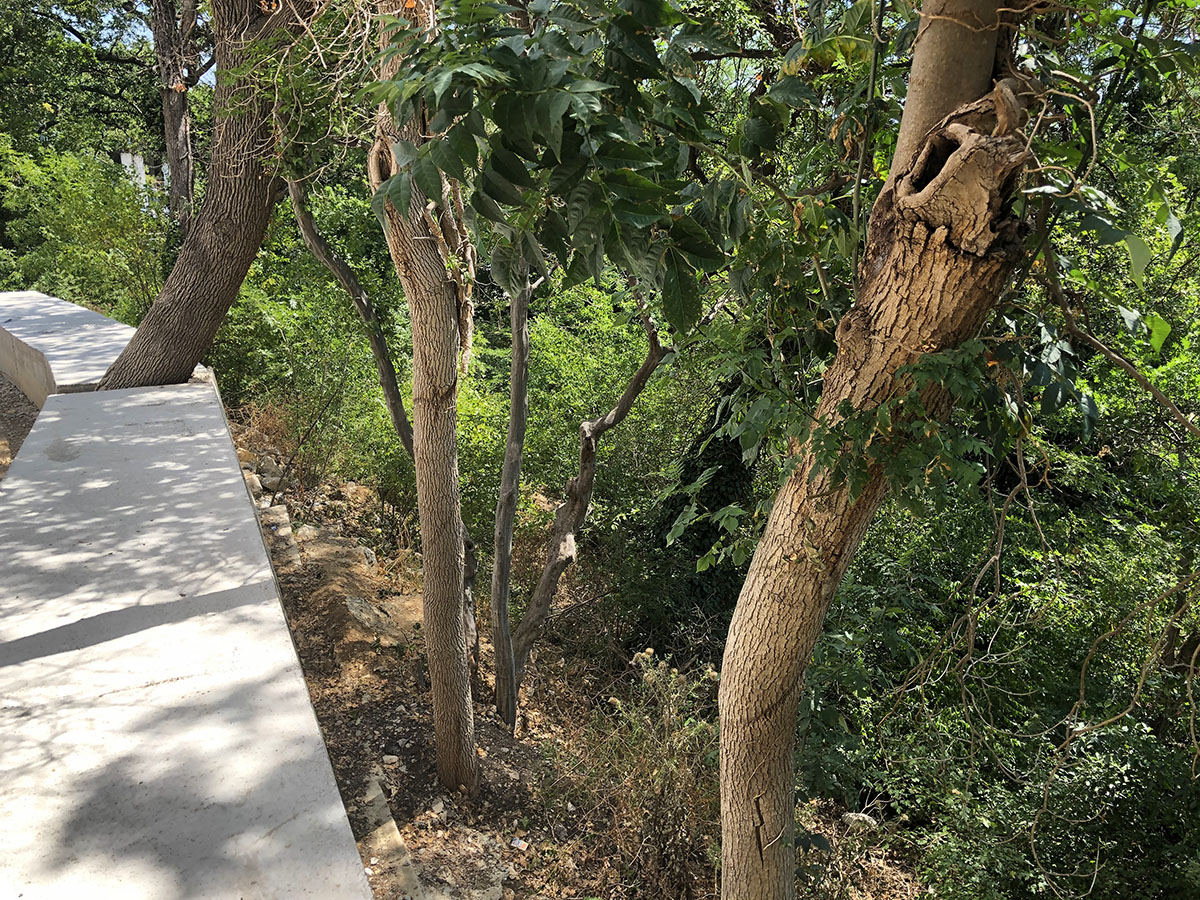 Продается земельный участок 9,5 соток в Ливадии 4