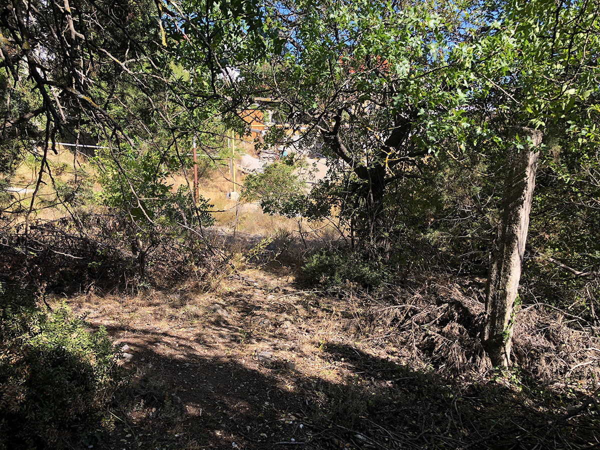 Продается земельный участок 5 соток в окружении кипарисов 4