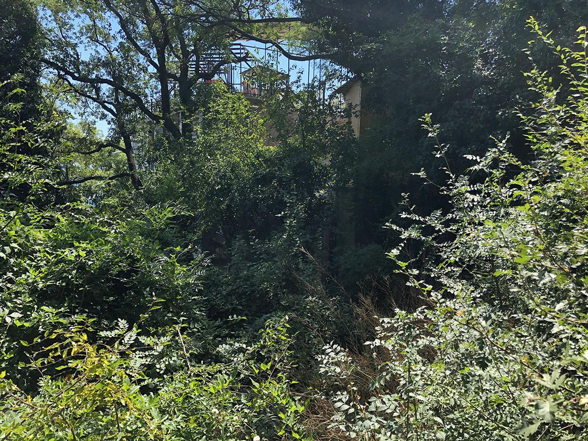 Продаётся земельный участок в Ливадии площадью 2 сотки 3
